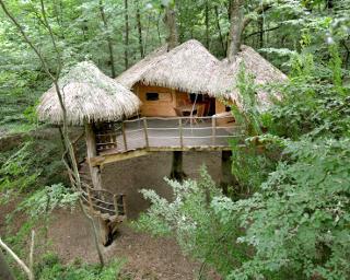 Cabane Dans Les Arbres Des Cabanes Dans Les Arbres En Normandie